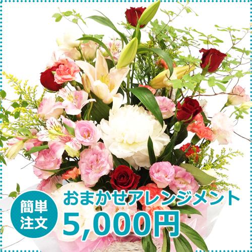 川崎発表会 アレンジメント